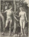 Adam and Eve, by Albrecht Durer, 1504
