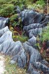 takaka marble (06 Feb 2012)