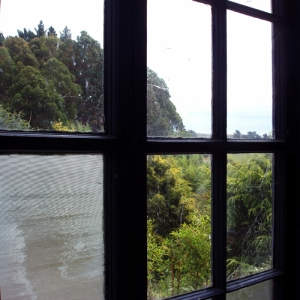 window view (01 Feb 2012)