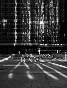 lines of light (photographer: Sam Javanrouh)