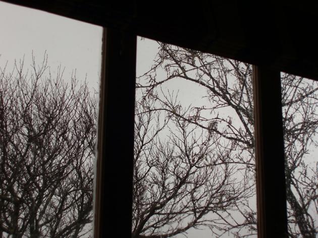 winter window (12 July 2013)