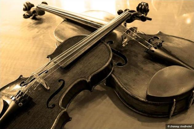 two violins by Danny Andreini