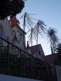 St John's, Dixon Street #006 (30 January 2008)