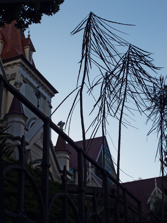 St John's, Dixon Street #007 (30 January 2008)